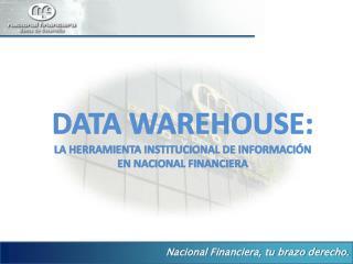 DATA WAREHOUSE: LA HERRAMIENTA INSTITUCIONAL DE INFORMACI N EN NACIONAL FINANCIERA