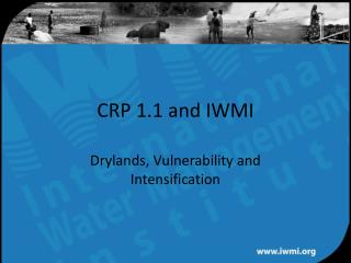 CRP 1.1 and IWMI