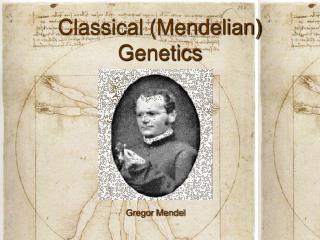 Classical (Mendelian) Genetics