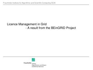 Licence Management in Grid - A result from the BEinGRID Project