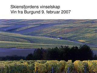 Skiensfjordens vinselskap Vin fra Burgund 9. februar 2007