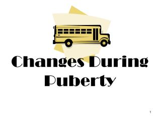 Changes During Puberty