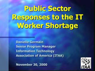 Public Sector Responses to the IT Worker Shortage