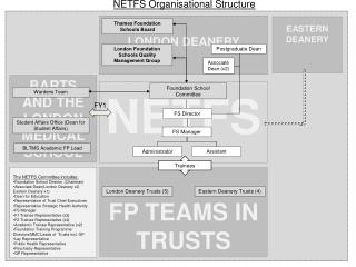 FP  TEAMS IN  TRUSTS