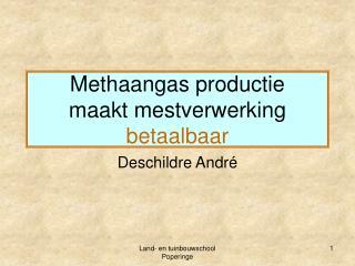 Methaangas productie maakt mestverwerking  betaalbaar