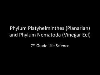 Phylum Platyhelminthes (Planarian) and Phylum Nematoda (Vinegar Eel)
