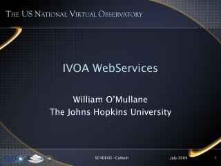 IVOA WebServices