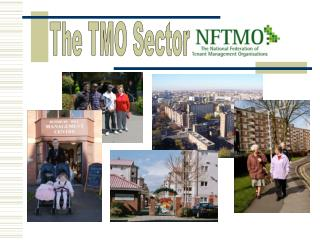 The TMO Sector
