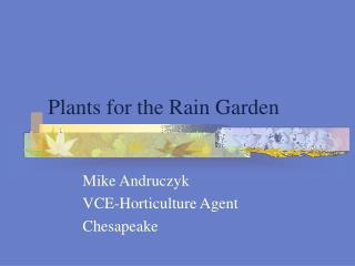 Plants for the Rain Garden