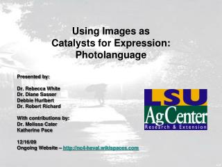 Using Images as  Catalysts for Expression: Photolanguage