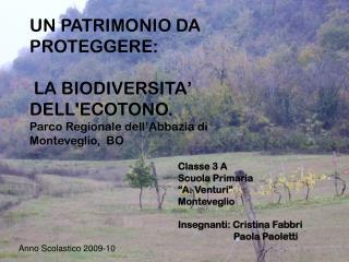 """Classe 3 A    Scuola Primaria """"A. Venturi"""" Monteveglio Insegnanti: Cristina Fabbri"""