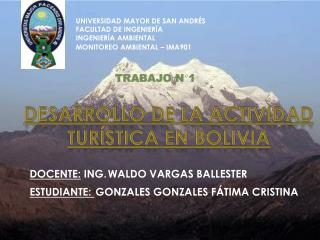 DESARROLLO DE LA ACTIVIDAD TURÍSTICA EN BOLIVIA