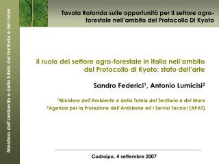 Il ruolo del settore agro-forestale in Italia nell'ambito del Protocollo di Kyoto: stato dell'arte