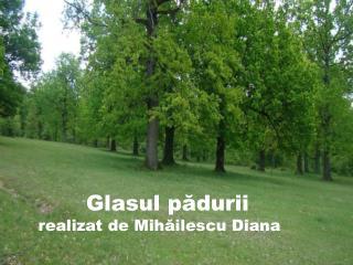 Glasul  pădurii  realizat de Mihăilescu Diana
