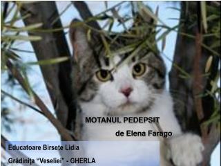 MOTANUL PEDEPSIT                de Elena Farago