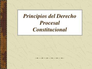 Principios del Derecho Procesal Constitucional