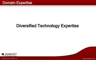 Domain Expertise