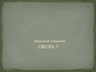 Bastionul croitorilor GRUPA 3