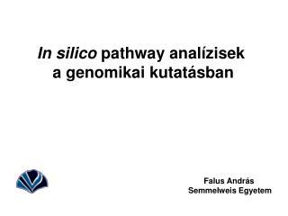 In silico  pathway analízisek  a genomikai kutatásban