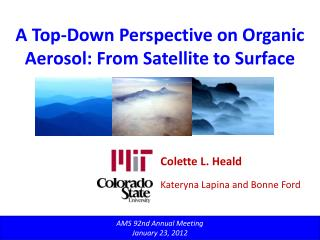 A Top-Down Perspective on Organic Aerosol: From Satellite to Surface