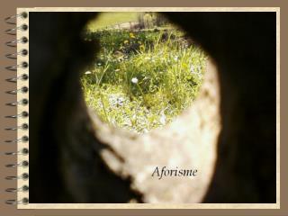 aforisme-ppt1