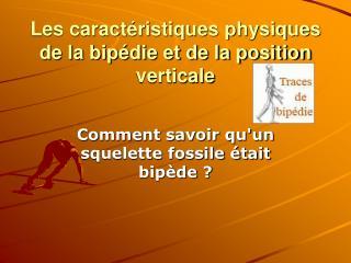 Les caract ristiques physiques de la bip die et de la position verticale