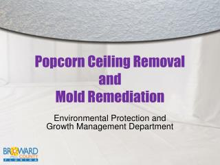 Popcorn Ceiling Removal and Mold Remediation
