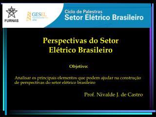 Perspectivas do Setor Elétrico Brasileiro
