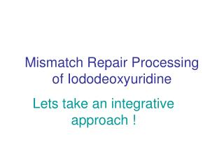 Mismatch Repair Processing of Iododeoxyuridine