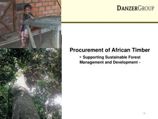 Procurement of African Timber -  Supporting Sustainable Forest Management and Development -