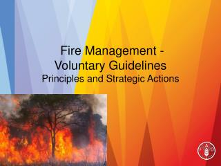 Fire Management -  Voluntary Guidelines  Principles and Strategic Actions