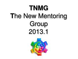 TNMG T he New Mentoring Group  2013.1