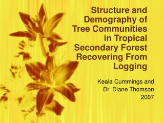 Structure and Demography of Tree Communities in Tropical Secondary Forest Recovering From Logging