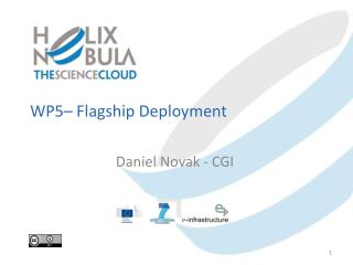 WP5 – Flagship  Deployment