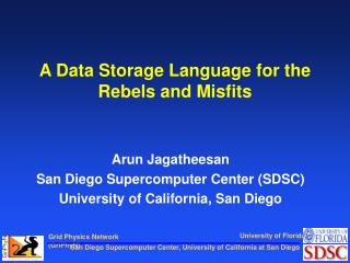 A Data Storage Language for the Rebels and Misfits
