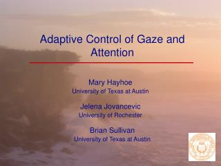 Adaptive Control of Gaze and Attention