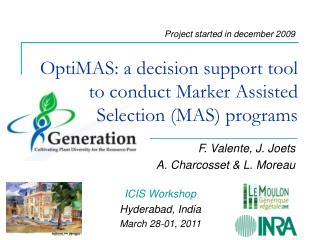 OptiMAS: a decision support tool to conduct Marker Assisted Selection (MAS) programs