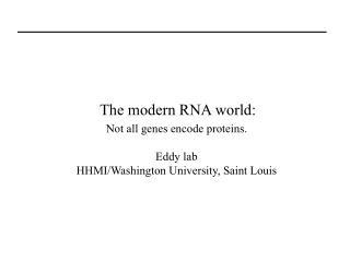 The modern RNA world: