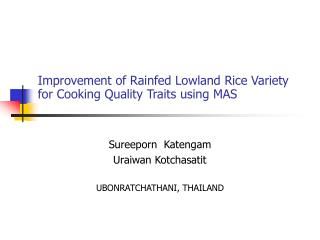 Improvement of Rainfed Lowland Rice Variety for Cooking Quality Traits using MAS