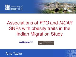Associations of  FTO  and  MC4R  SNPs with obesity traits in the Indian Migration Study