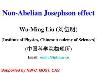 Non-Abelian Josephson effect