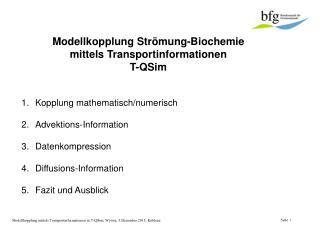 Modellkopplung Strömung-Biochemie mittels Transportinformationen  T-QSim