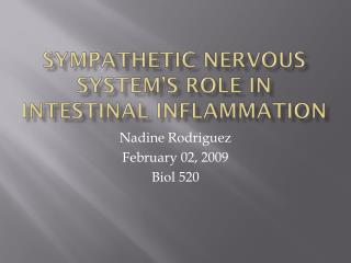 Sympathetic Nervous System's Role in Intestinal Inflammation