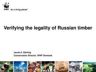 Verifying the legality of Russian timber