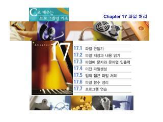 Chapter 17  파일 처리