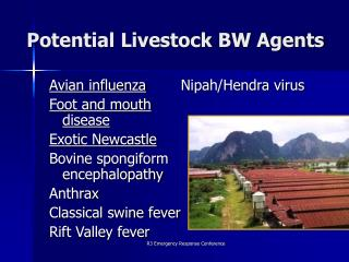 Potential Livestock BW Agents