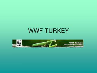 WWF-TURKEY