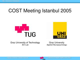 COST Meeting Istanbul 2005