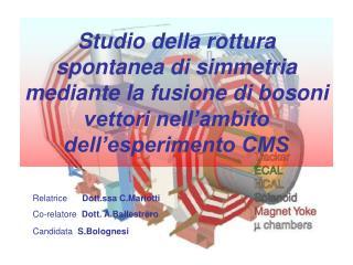 Relatrice       Dott.ssa C.Mariotti Co-relatore   Dott. A.Ballestrero