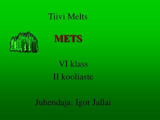 Tiivi Melts METS